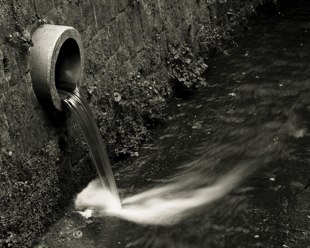 Wald Wasser Rohr